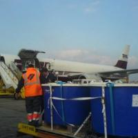 April 2007 April 2007 - Loading Mola mola tanks on DHL Boeing 757 in Lisbon. Destination: Vitoria, Spain.