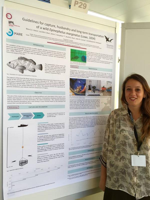 Congratulations, Nina Vieira, who's been working with us on the capture, husbandry, and long-term transportation (by sea) of Epinephelus marginatus, and it was our absolute pleasure to pay for Nina's registration for the International Meeting on Marine Resources, held in Peniche, where she presented her work.