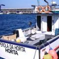 2008/08<br />Horta<br />Faial Island, Portugal